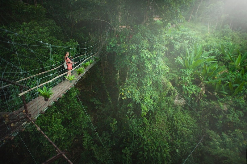 woman on precarious bridge in jungle