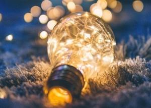 light bulb in frozen grass