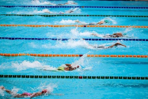Swimmers in a swim meet